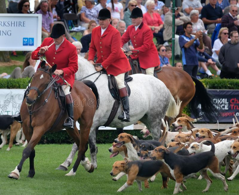 The Hunt, riders and fox hounds at agricultural show. The 134 th. Lincolnshire Agricultural Show, Show ground, Lincoln, Lincolnshire, UK. June, 20 2018. The royalty free stock photos