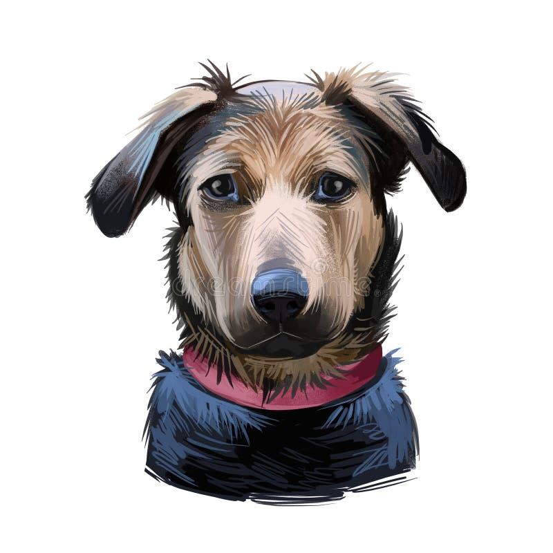 Free Huntaway, New Zealand Huntaway Dog Digital Art Illustration Isolated On White Background. New Zealand Origin Large Tricolor Stock Image - 159471721