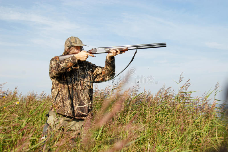 Download Hunter stock image. Image of reed, decoy, shore, duckhunting - 26681175