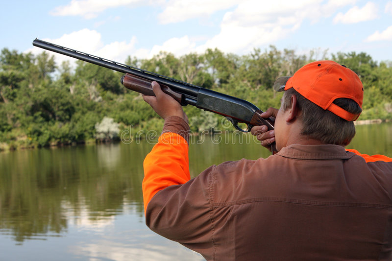 Download The Hunter stock image. Image of riverside, duck, hunting - 6144043