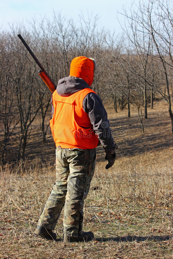 Hunter in Blaze Orange. Hunter in a field wearing camouflage and blaze orange royalty free stock photos