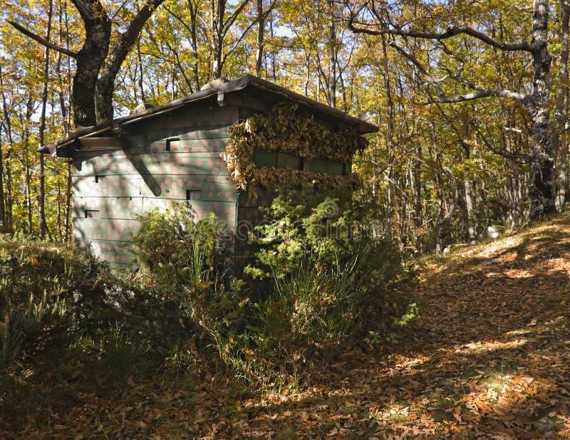 Hunter cabin stock photos
