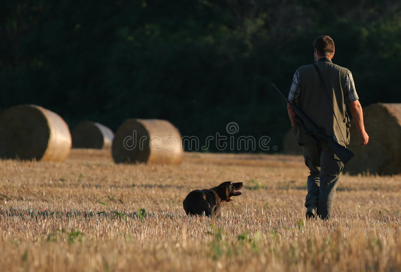 Hunter & his dog. Hunter and his dog walk on the strawfield. The dog watches strongly on his mummy royalty free stock image