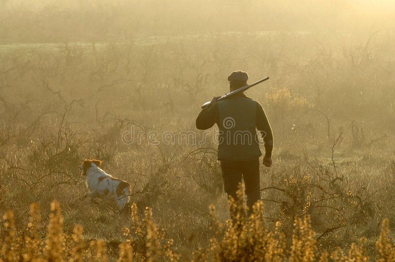 Download Hunter And His Dog Royalty Free Stock Photo - Image: 5231655