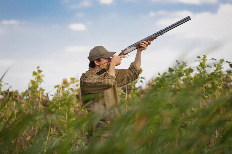 Hunter during a hunting party. Young hunter camouflaged in dense vegetation during a hunting party royalty free stock photography