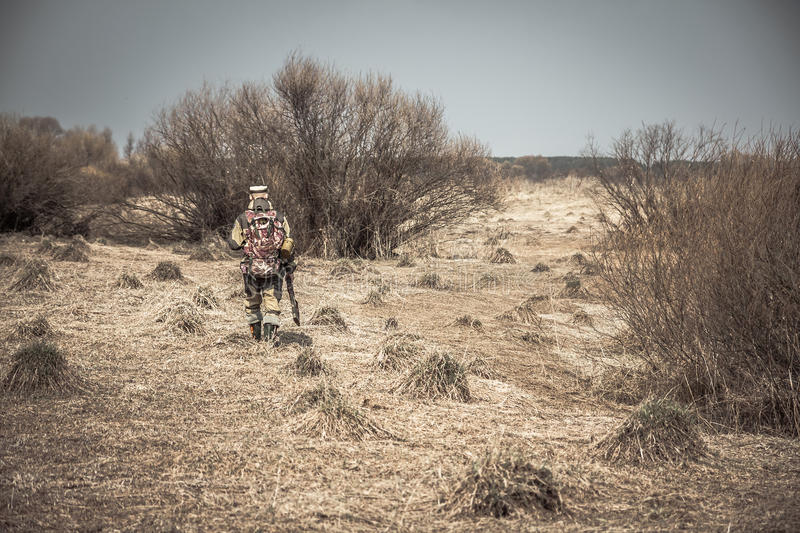 Hunter man in camouflage with gun going through rural area with dry grass and bushes during hunting stock photography