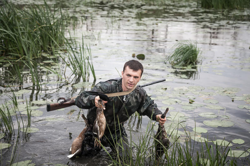 Hunter man with prey after a successful hunt break through marshland royalty free stock images