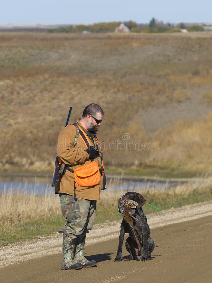 Hunter with a pheasant and his dog. Hunters dog retrieving a rooster pheasant royalty free stock image