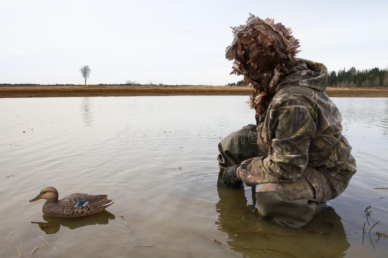 A hunter with a plastic duck decoy in shallow water. Waterfowler with a plastic duck decoy in shallow water before the hunt royalty free stock images