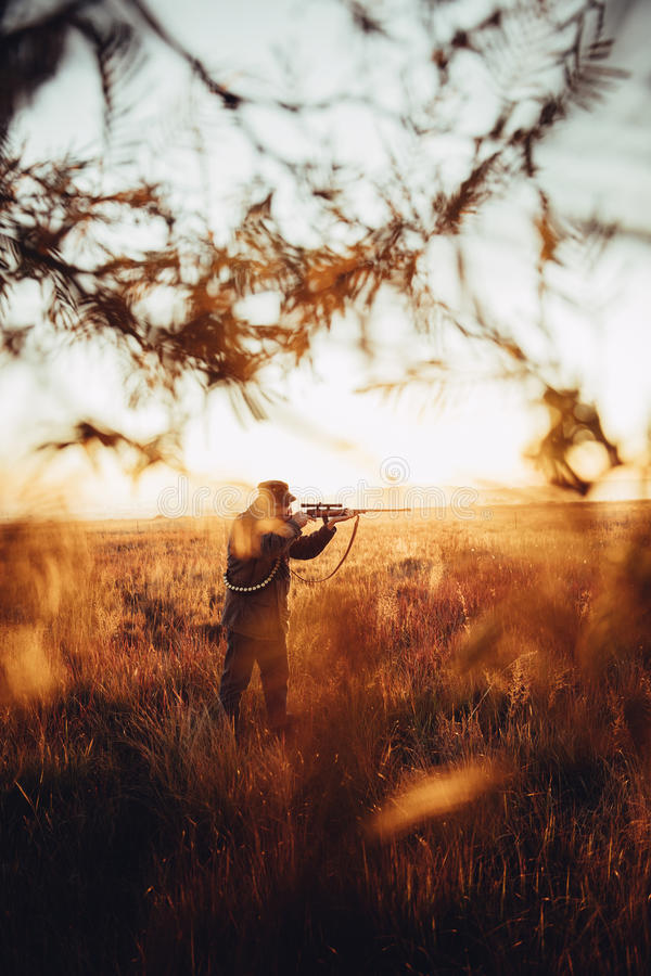 Hunter pointing with rifle on his prey in wilderness. In sunrise royalty free stock images