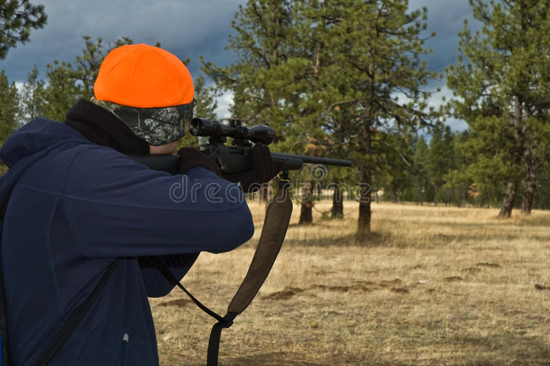 Hunter pointing rifle into woods. Male hunter pointing a rifle into the woods royalty free stock photo