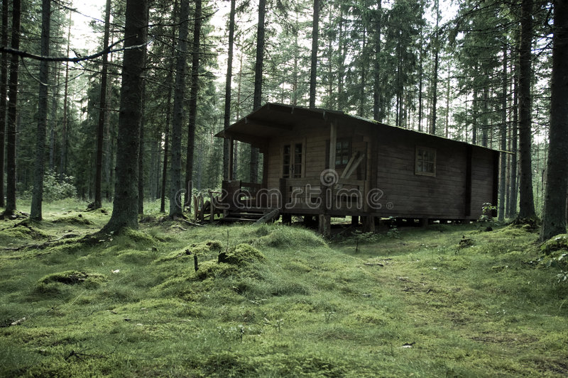 Download Hunter's Cabin in Forest stock photo. Image of forest - 3027110