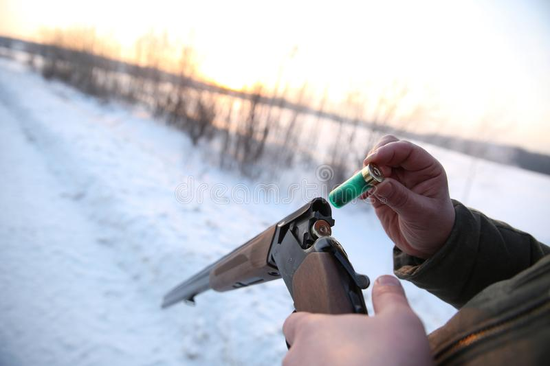 Hunter`s hand charges the hunting cartridge in the gun. Reloading weapons on winter hunt. The unfolded hunting gun is charged with a cartridge. Men`s hand royalty free stock photo