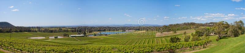 Hunter Valley Australia, panorama delle vigne fotografia stock