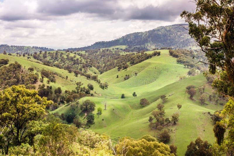 Hunter Valley supérieur, NWS, Australie photographie stock libre de droits