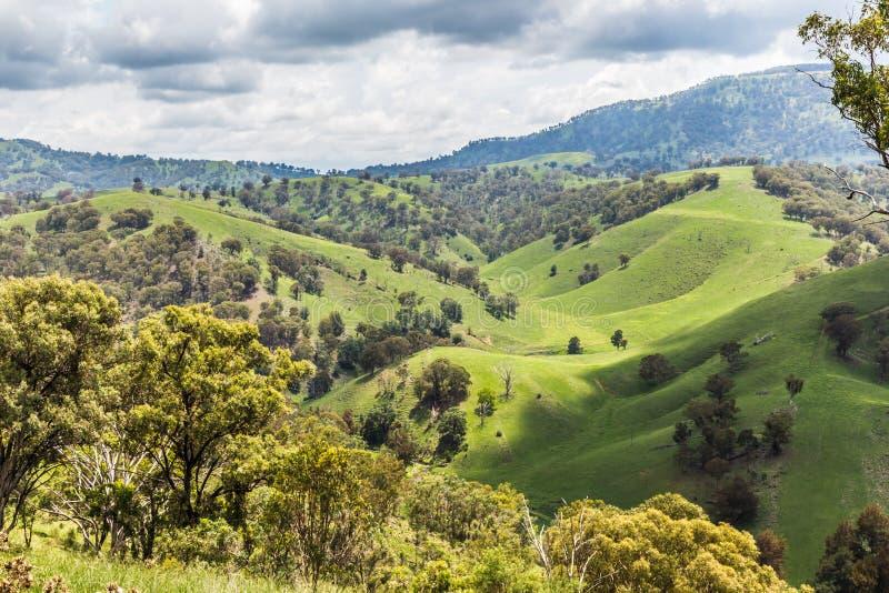 Hunter Valley superior, NWS, Australia imagenes de archivo