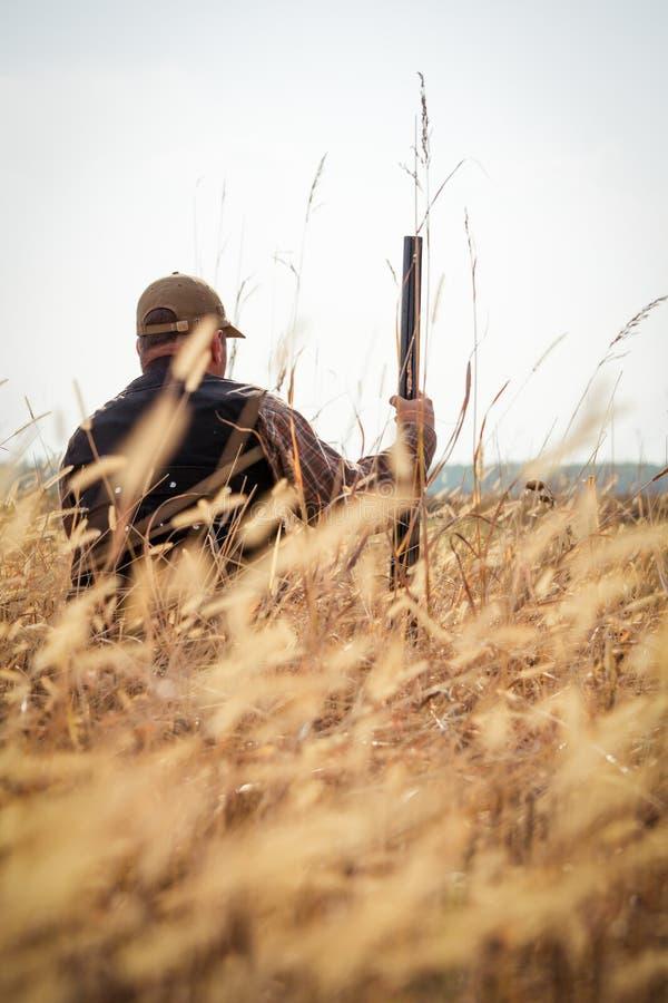 Hunter wild duck hunting stock photo