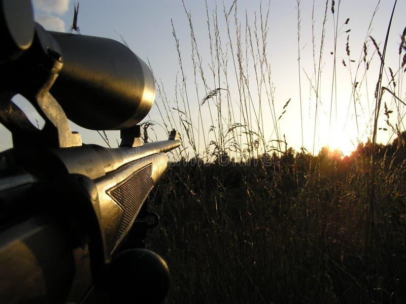 hunting royalty-vrije stock fotografie