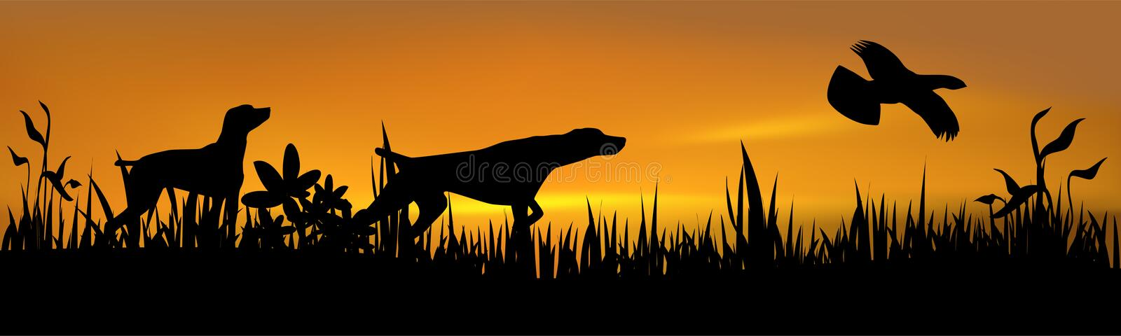 Hunting dogs with bird vector illustration