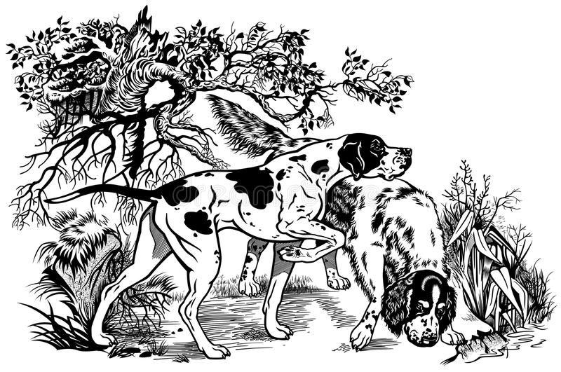 Hunting dogs in forest royalty free illustration