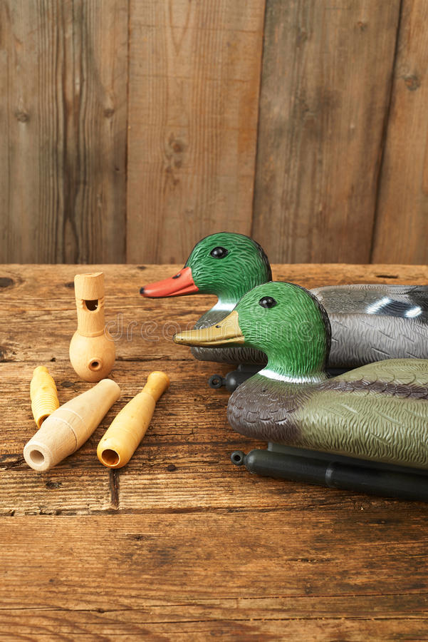 Hunting. Duck decoys with wooden whistles. Hunting. Duck decoys and wooden whistles stock photo