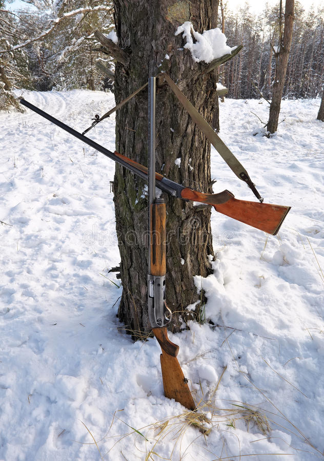 Hunting guns in the winter forest. Winter hunting stock photos
