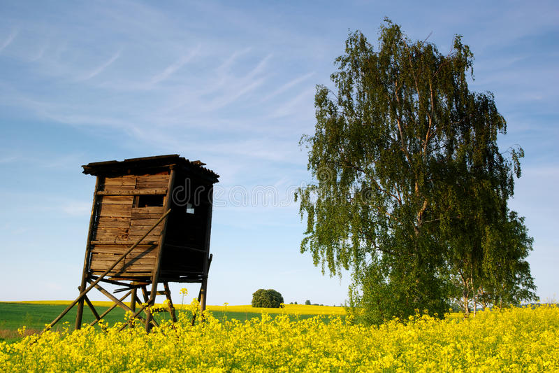 Download Hunting hide stock photo. Image of fertile, europe, afield - 15214260