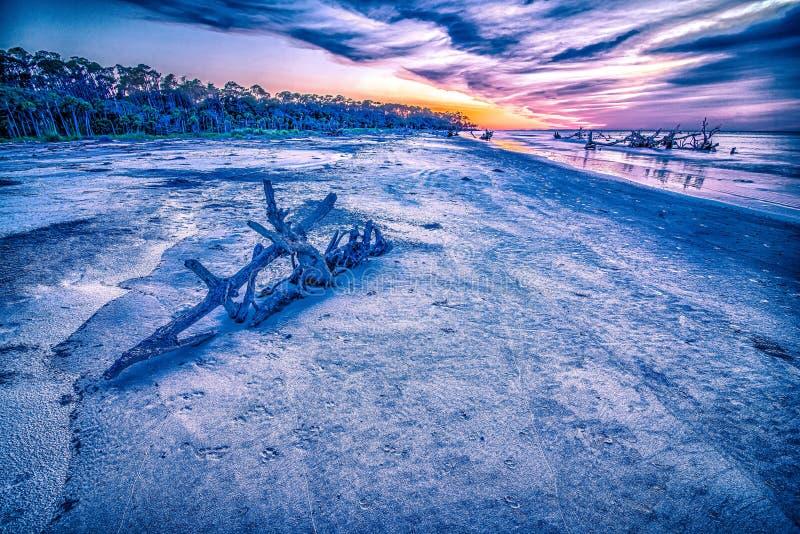 Hunting island south carolina beach scenes. Hunting island south carolina beach  scenes stock images