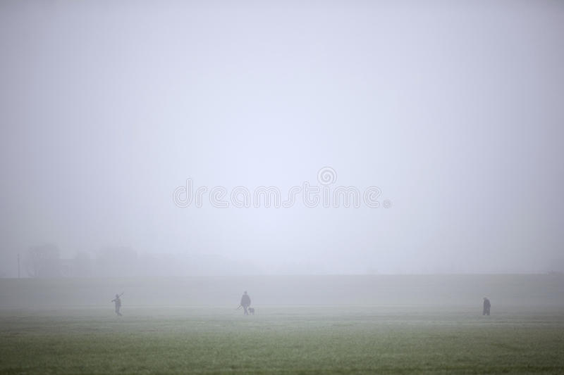 Hunting party in meadow in the Netherlands. Hunting party in meadow in holland under misty conditions royalty free stock photography