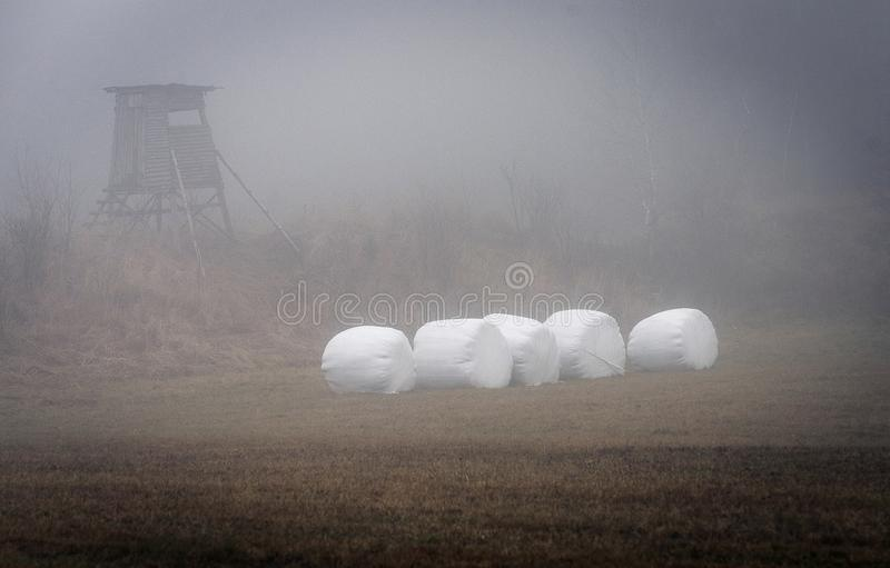 Hunting posed and white hay bales in a fog. Over a frozen meadow in the highlands royalty free stock photo