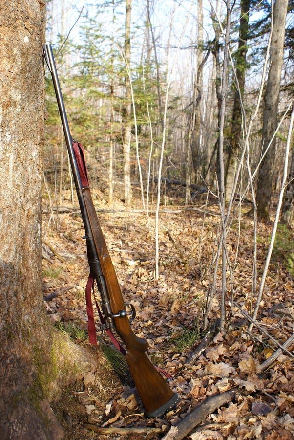 Free Hunting Rifle Stock Image - 11031331