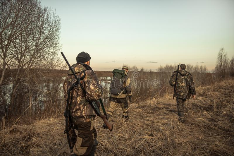 Hunting scene with group of hunters with hunting ammunition going through rural field during hunting season at sunset stock image