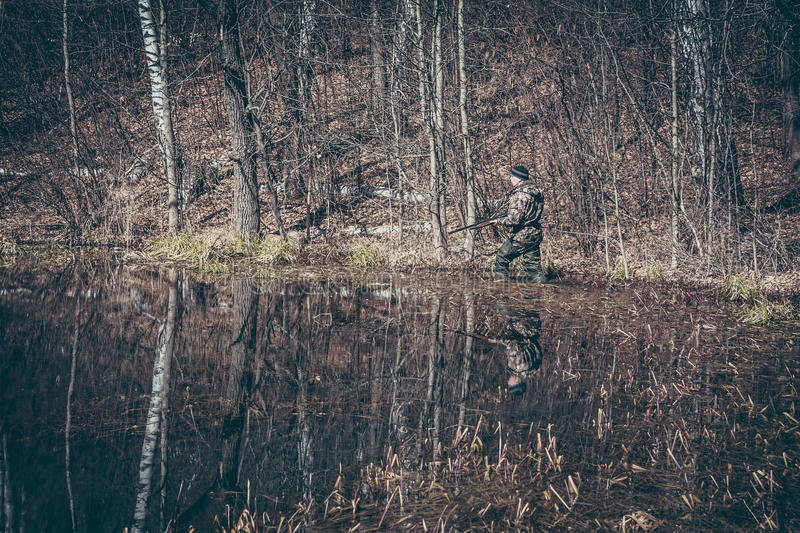 Hunting scene with hunter man stealing in wetland with forest during hunting season stock images