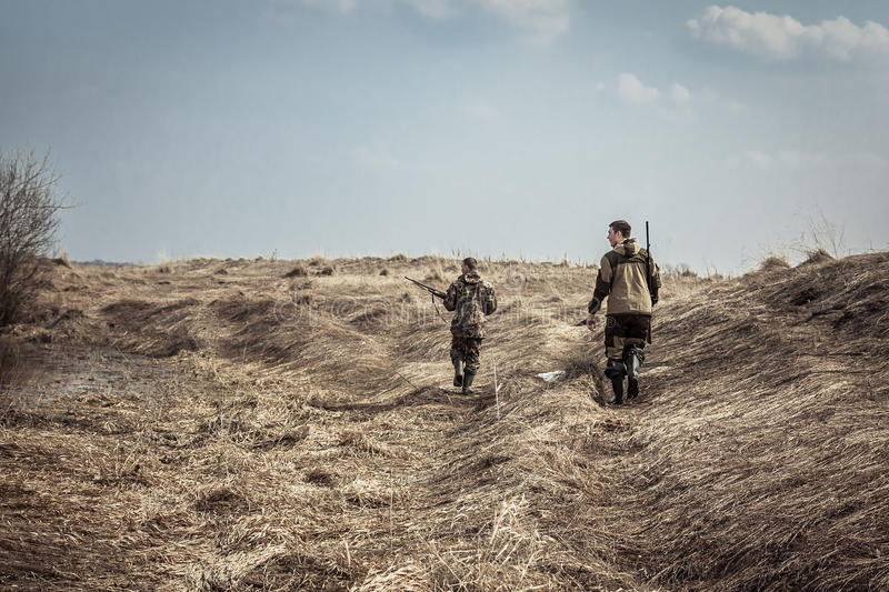 Hunting scene with men hunters with shotguns exploring rural area during hunting season royalty free stock image