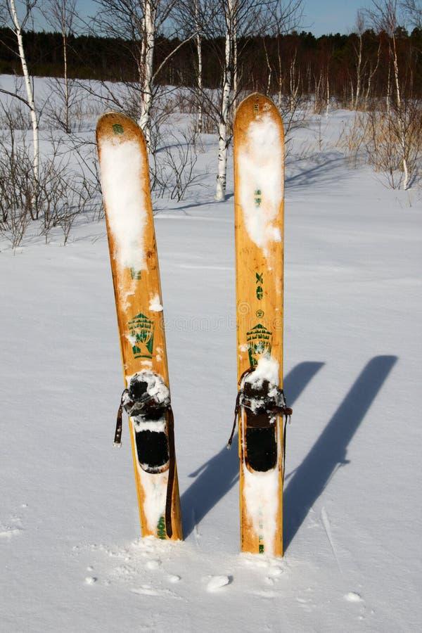 Free Hunting Skiing Royalty Free Stock Image - 13372576