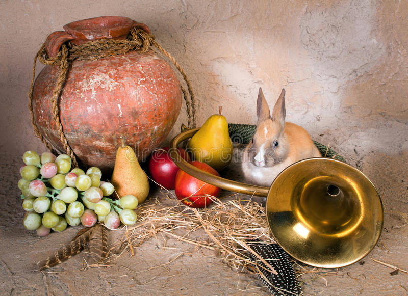 Hunting Still Life With Rabbit Stock Photography