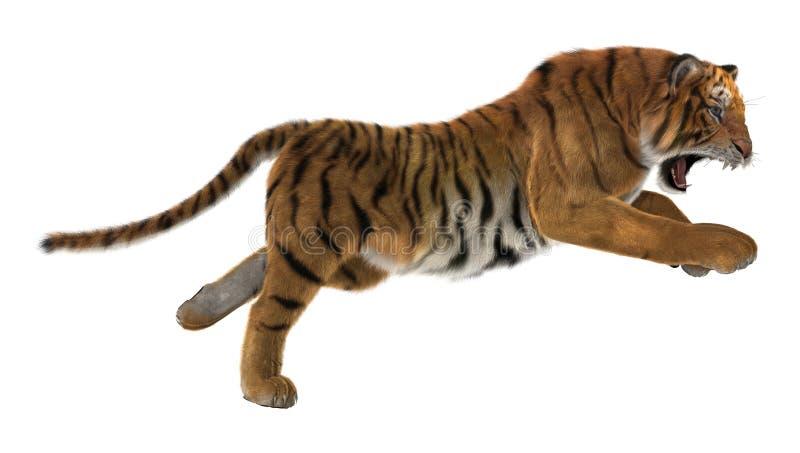 Hunting Tiger stock image