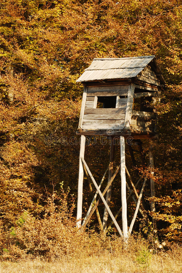 Download Hunting tower stock image. Image of nature, hide, wooden - 21923521
