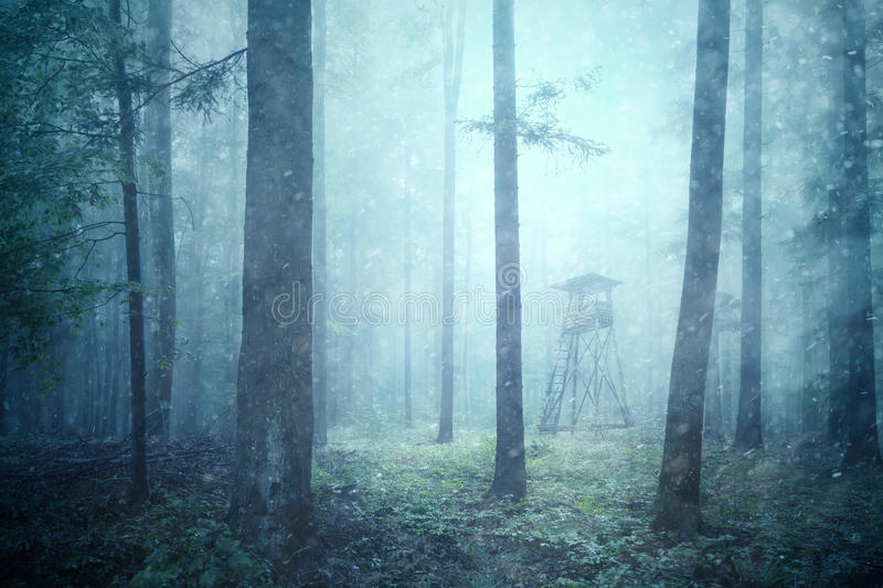 Hunting tower in rainy and snowy forest landscape stock photography