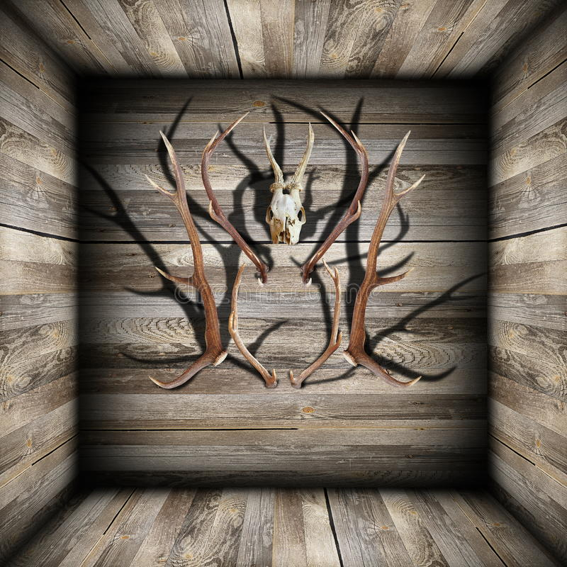 Download Hunting Trophies On Wooden Room Stock Image - Image: 39155281