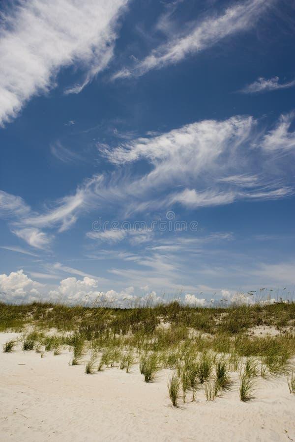 Huntington beach fotografia royalty free