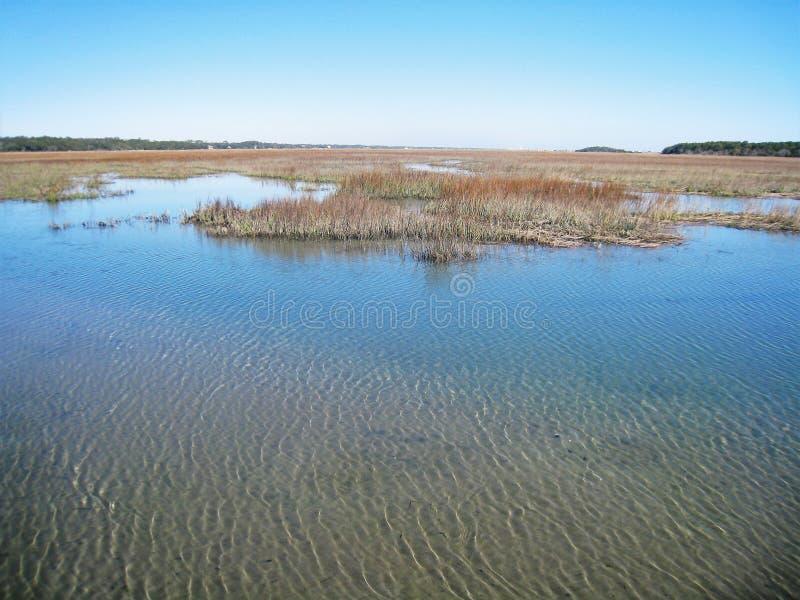 Huntington Beach-Sumpf stockbild