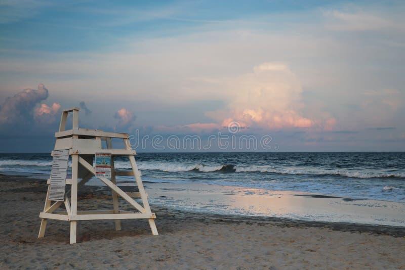 Huntington Beachdelstatspark, South Carolina, Murrels öppning, Myrt arkivbild