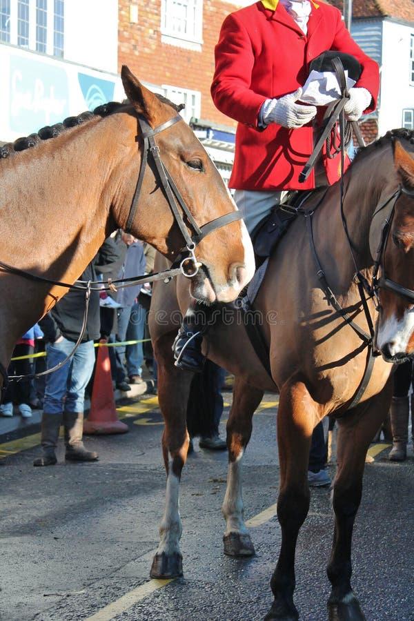 Huntsman przygotowywający dla polowania w tłumu fotografia royalty free