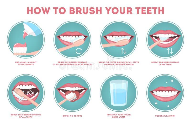 Hur man borstar din steg-för-steg anvisning för tänder stock illustrationer