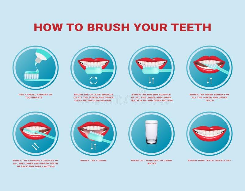 Hur man borstar din steg-för-steg anvisning för tänder Tandborste och tandkräm för muntlig hygien Ren vit tand Sunt vektor illustrationer