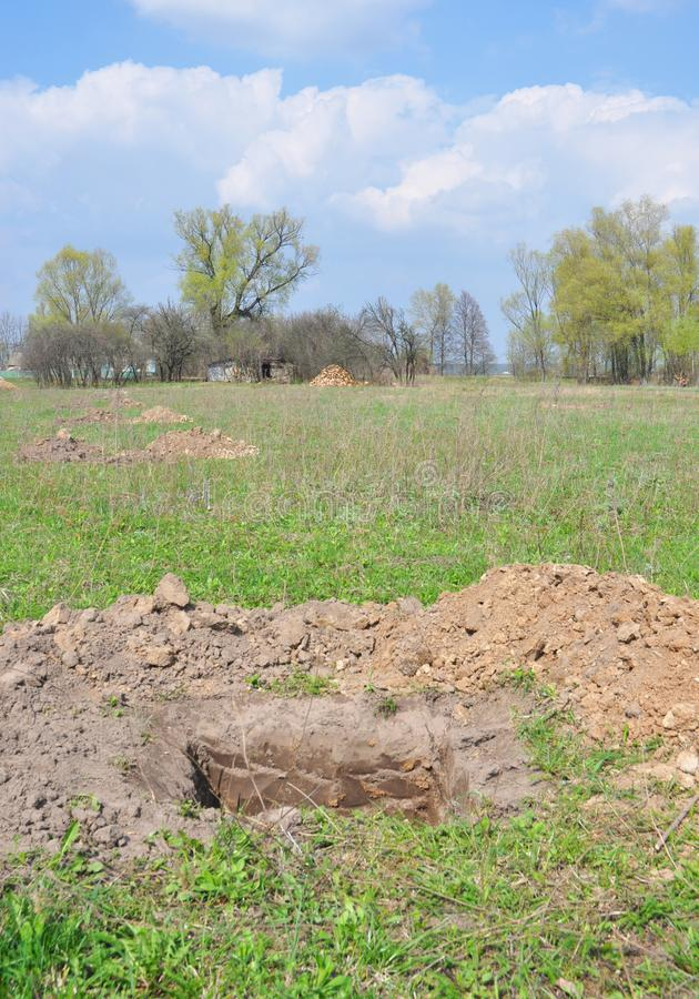 Hur man gräver ett perfekt plantera hål i trädgård Gräva ett hål för att plantera ett fruktträd arkivbilder