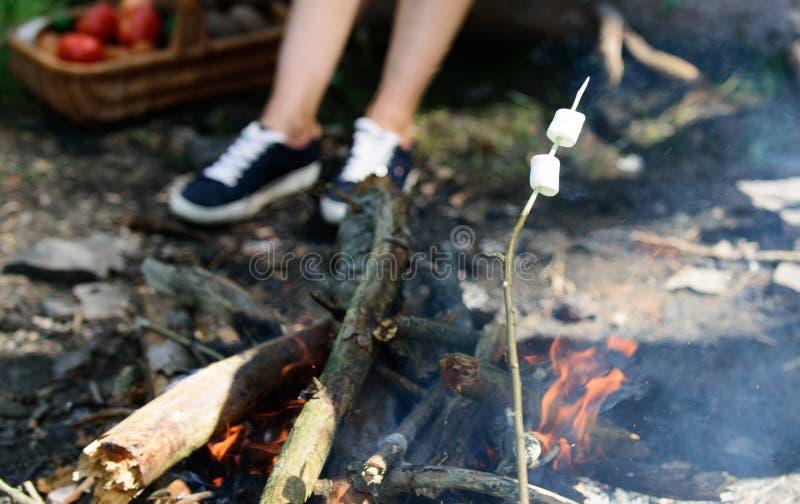Hur man grillar marshmallower Marshmallower på pinnen med brasan och rök på bakgrund Roasty varm och skön marshmallower är arkivbilder
