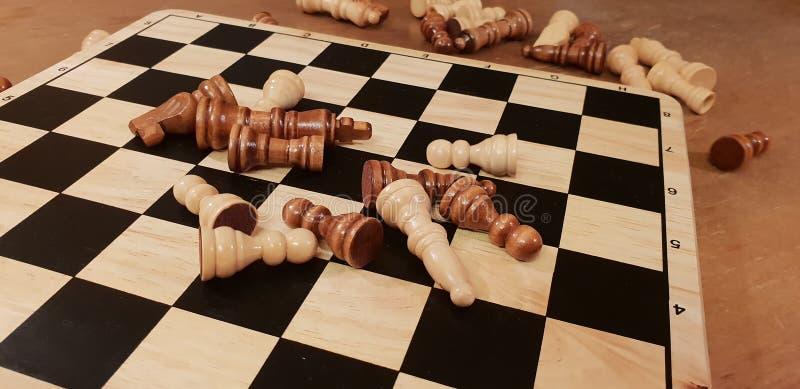 Hur man spelar schack för träbrädelek Improvisation och olika vinklar av den schackuppsättningar, stycken och schackbrädet Vit- o royaltyfri bild