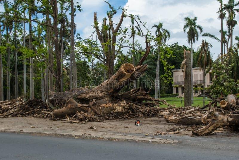Huracán Maria Damage en Puerto Rico foto de archivo